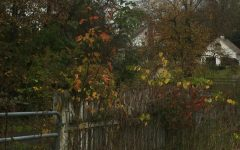 Navigation to Story: A Taste of Fall